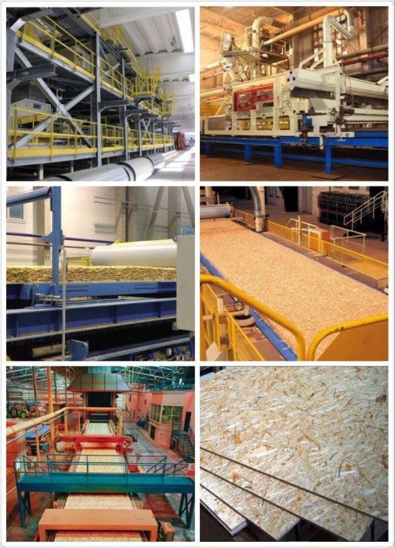 Cheap Price Waterproof OSB/OSB with Ce/SGS Certificate