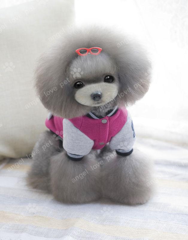 Baseball Uniform Fashion Pet Dog Clothes
