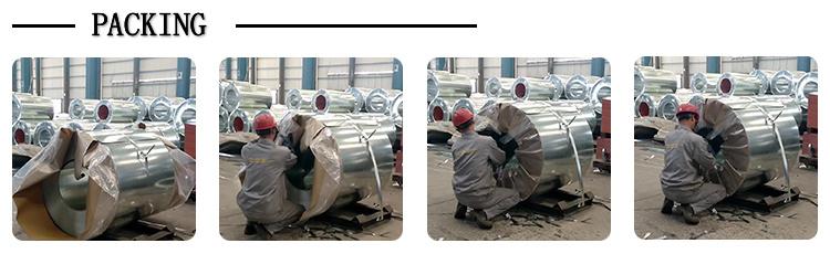 Steel Coil Galvanized