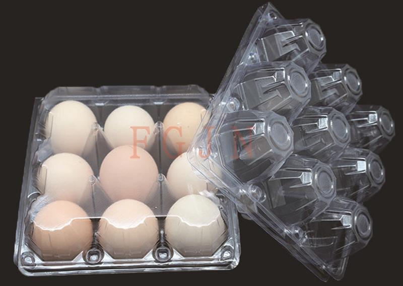 Wholesale Hot Sale Plastic Egg Tray Manufacturer