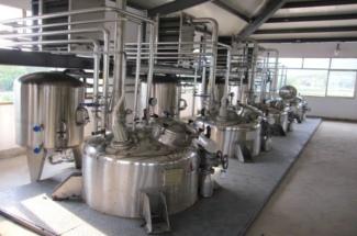 Green Tea Extract, Black Tea Extract, Oolong Tea Extract, Instant Green Tea, Instant Dark Tea