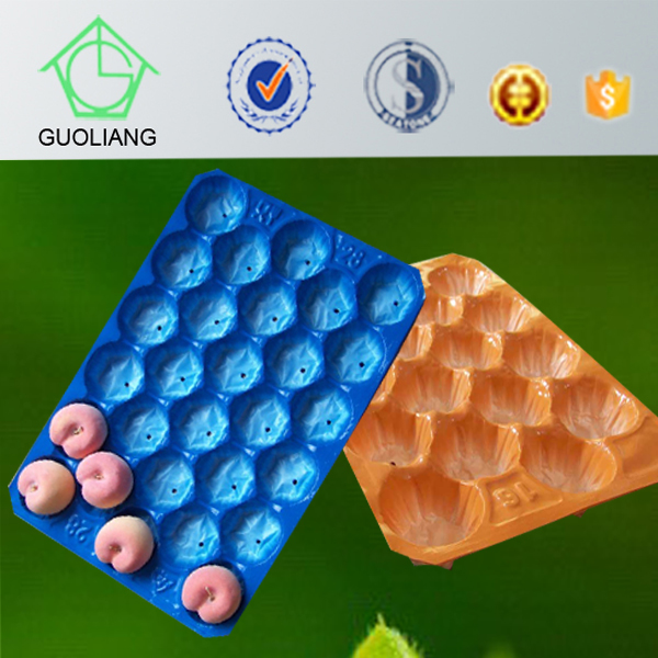 China Manufacture Custom Food Packaging Cheap Plastic Serving Trays