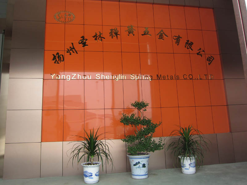 Slth-Ms-049 65mn Stainless Steel Metal Stamping Parts for Industry