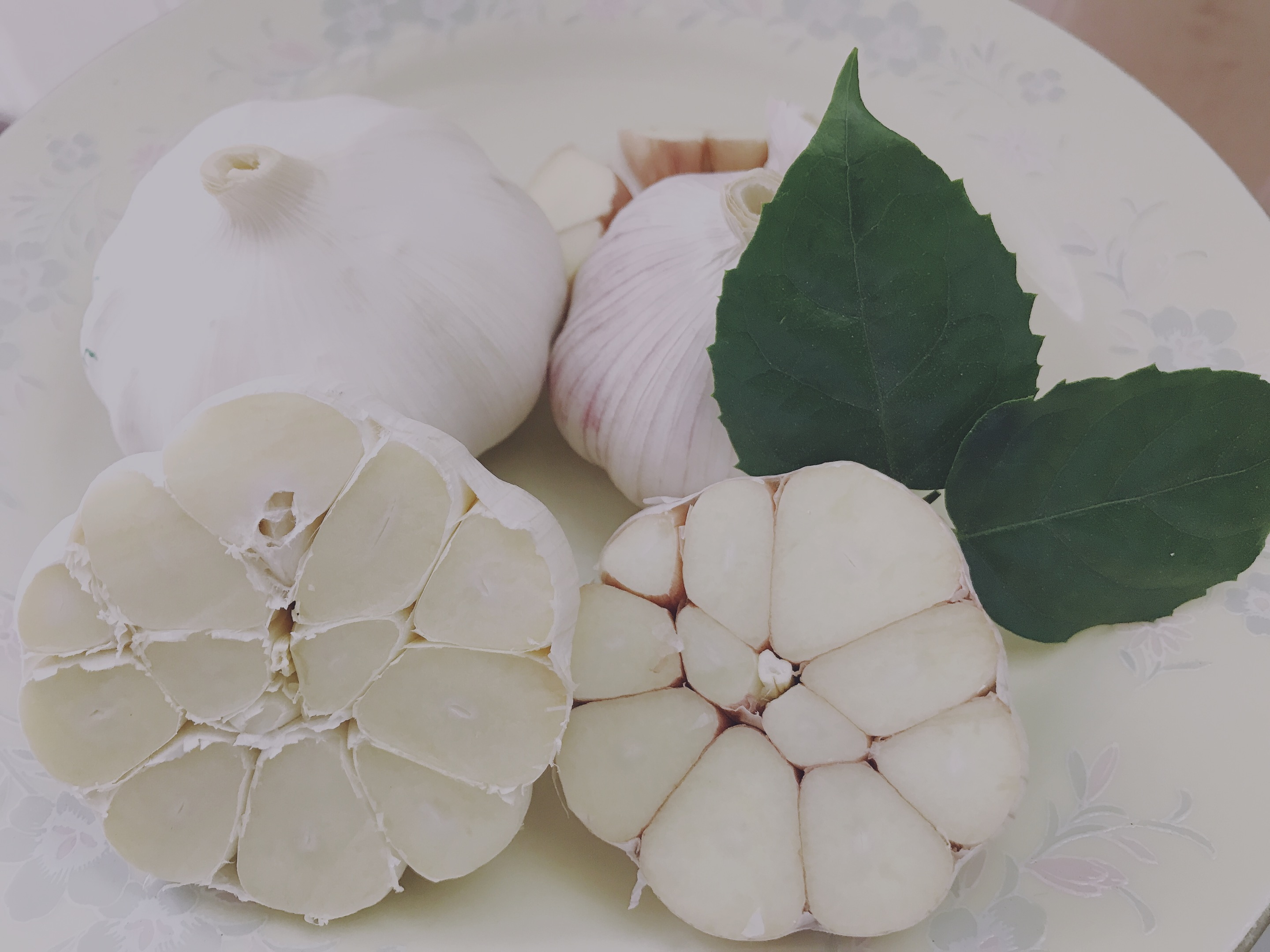 High Quality Wholesale Custom Cheap garlic