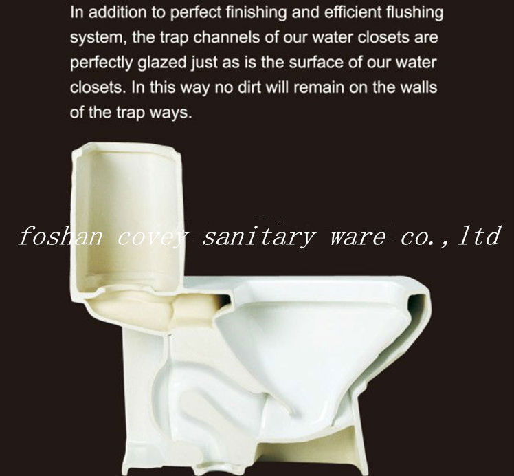 Cupc Siphonic One-Piece Toilet with S-Trap 300mm (A-JX820)