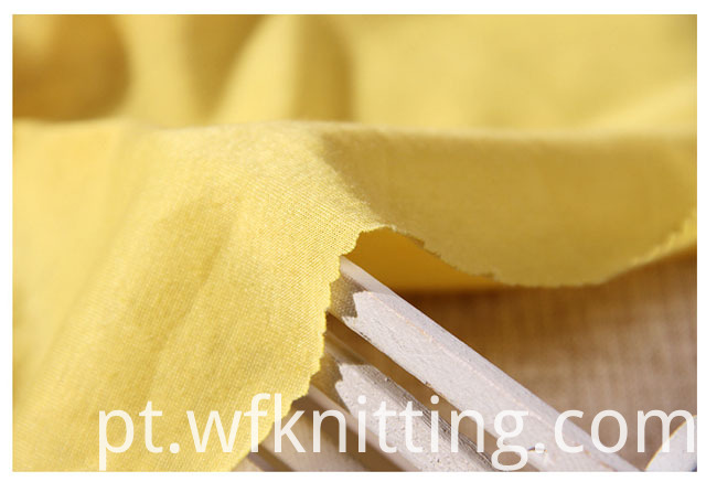 Polyester Single Jersey Fabric