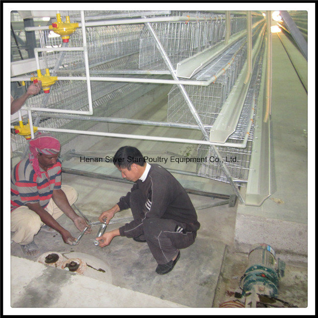 H Type Poultry Equipment for Broilers