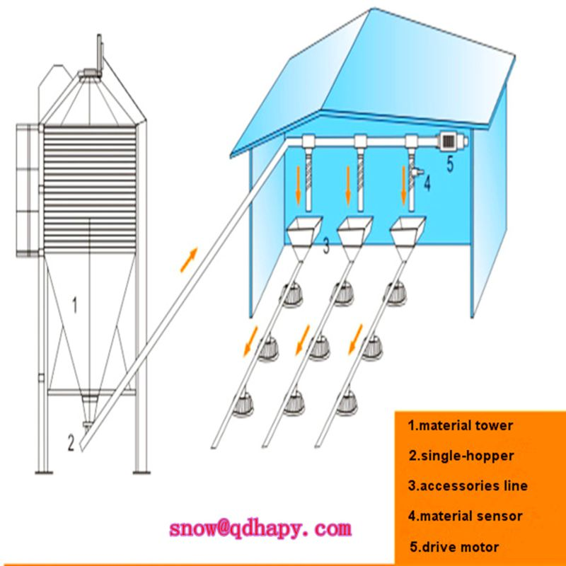 Poultry Equipment for Broiler/Layer /Breeder Chickens