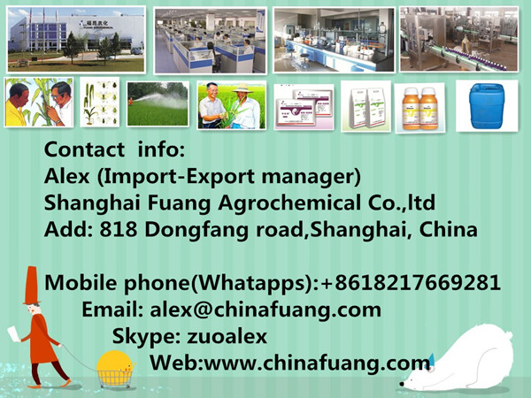 Agrochemicals Cabbage Caterpillar Eco-Friendly Vegetable Insecticide Pest Control Bacillus Thuringiensis