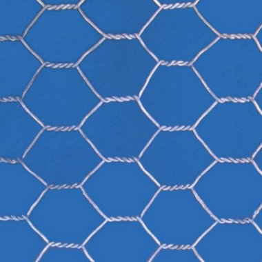 PVC Coated/Stainless Steel Wire Hexagonal Wire Mesh