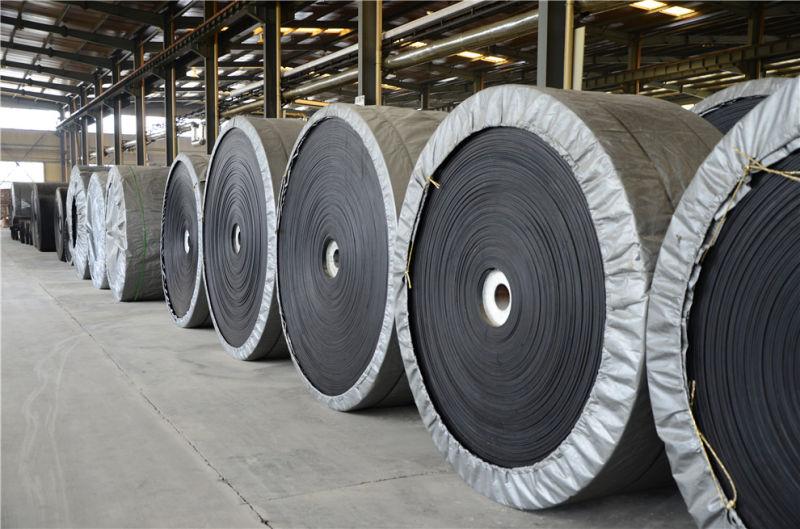 China Cotton Canvas Conveyor Belt