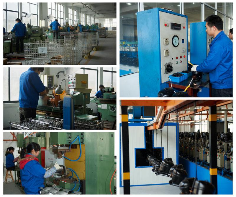 New High Efficiency DC Compressor 12V 24V Compressor Qdzh25g R134A Lbp Mbp