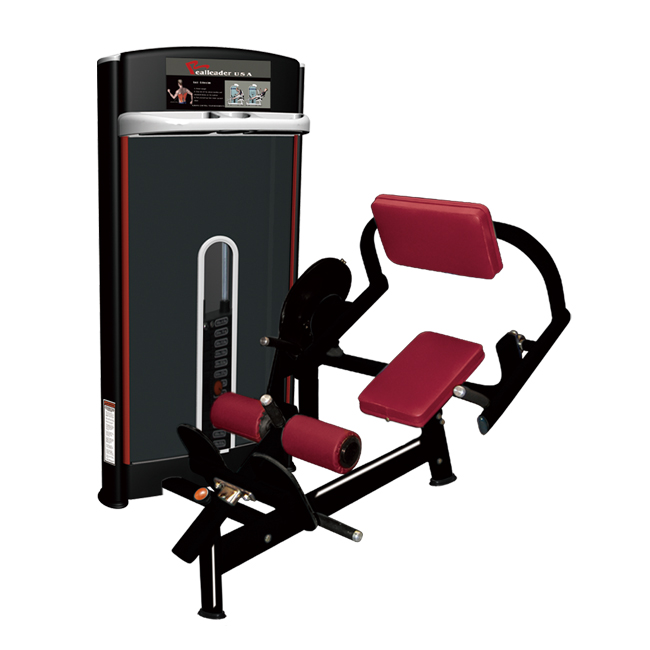 Gym Equipment for Back Extension (M7-1012)