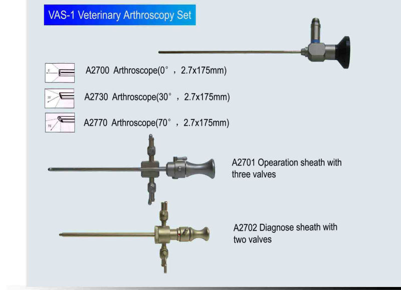Veterinary Arthroscope/Vet Arthroscope (VAS-1)