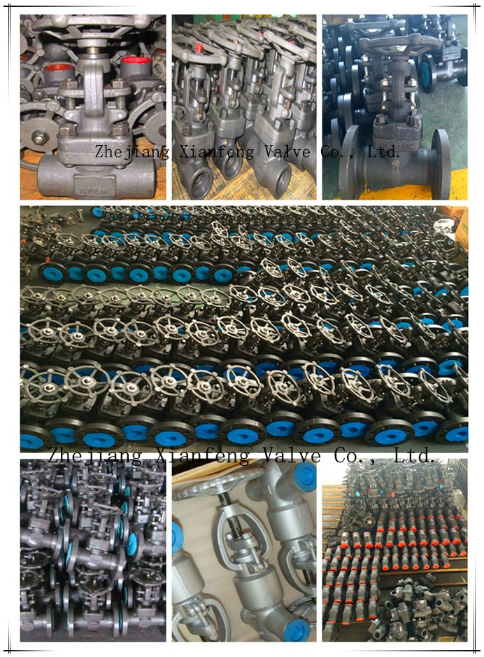API602 800lb Forged Steel A105 Thread End NPT Gate Valve