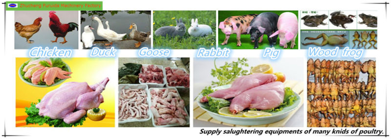 Vacuum Packaging Machine for Chickens' Slaughtering