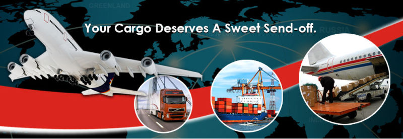 Shipping Agent/Freight Forwarder/Logistics From China to Worldwide- Logistics