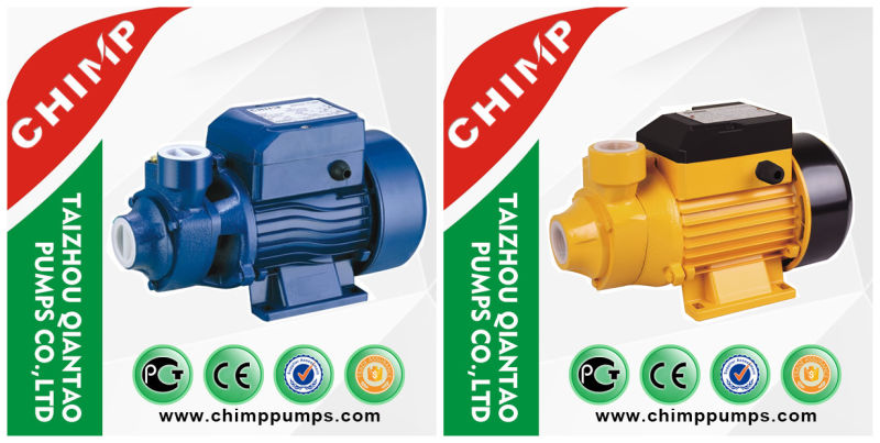 China 0.5HP Small Electric Home Clean Vortex Water Pump 220V/120V