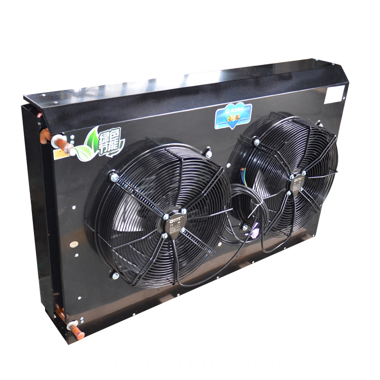 Two Motor Air Condenser