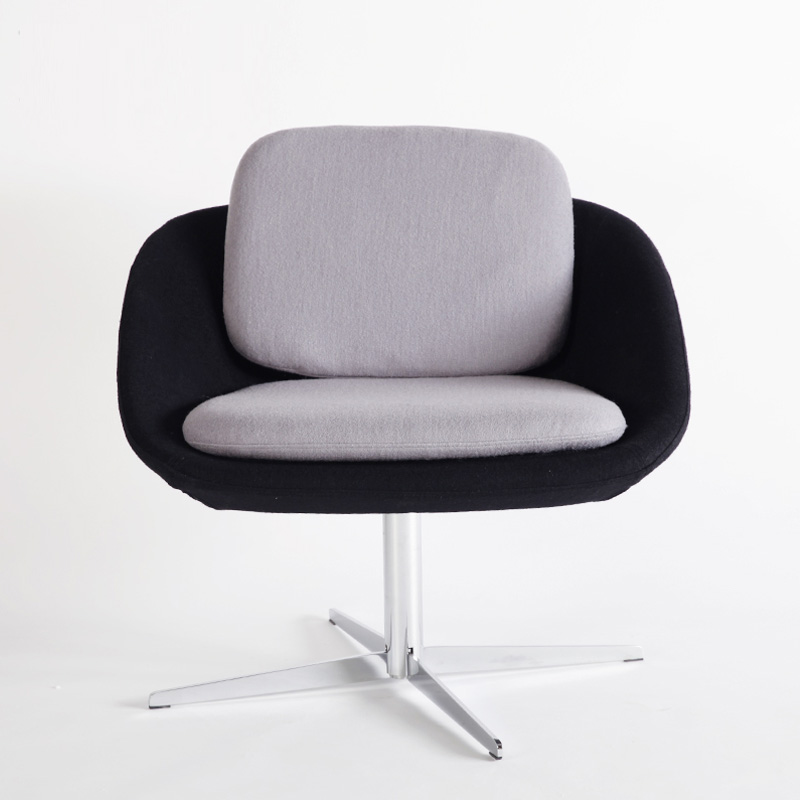 Living Room Lesiure Style Home Furniture Lounge Chair