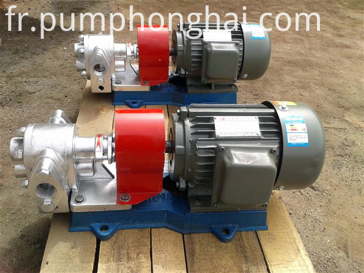 LQB stainless steel material gear pump
