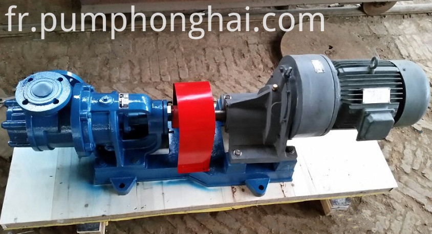 NYP cast iron material rotor pumps