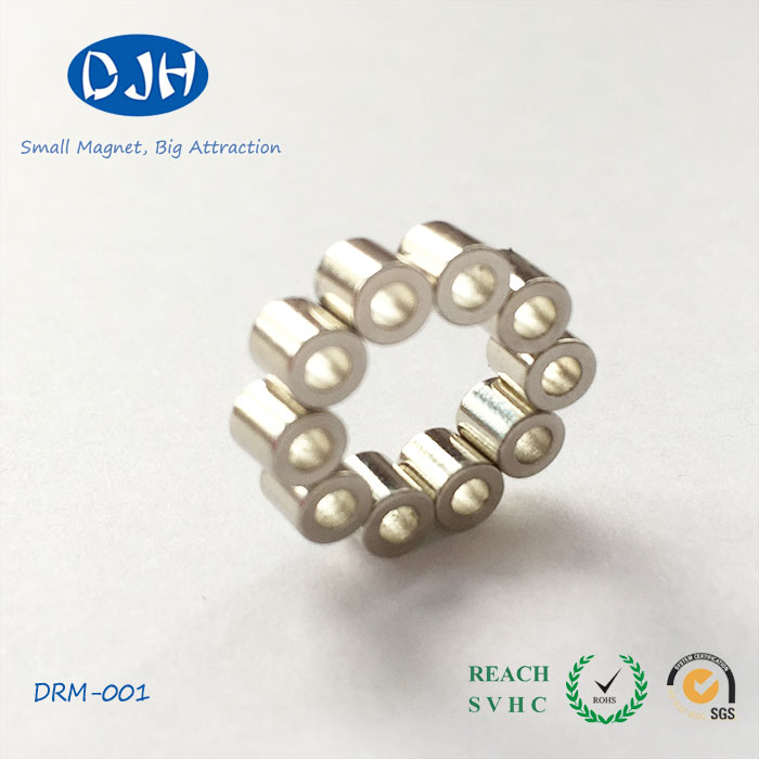Speaker Accessories Ring Magnets Can Be Customized