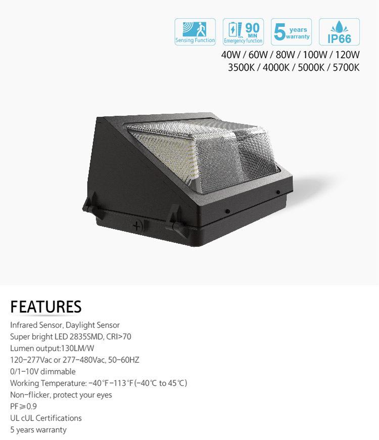 CCT Tunable Wall Pack Light