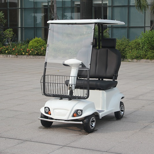 Environmental CE Approval Electric Mobility Scooter (DL24800-6A / 6B)
