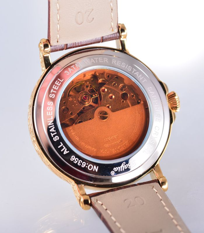 Baijia Day Date Mechanical Men's Watch with Leather Band