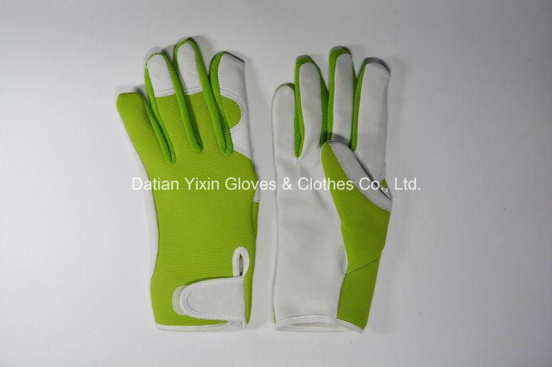Glove-Working Glove-Safety Glove-Cheap Glove-Protected Glove-Protective