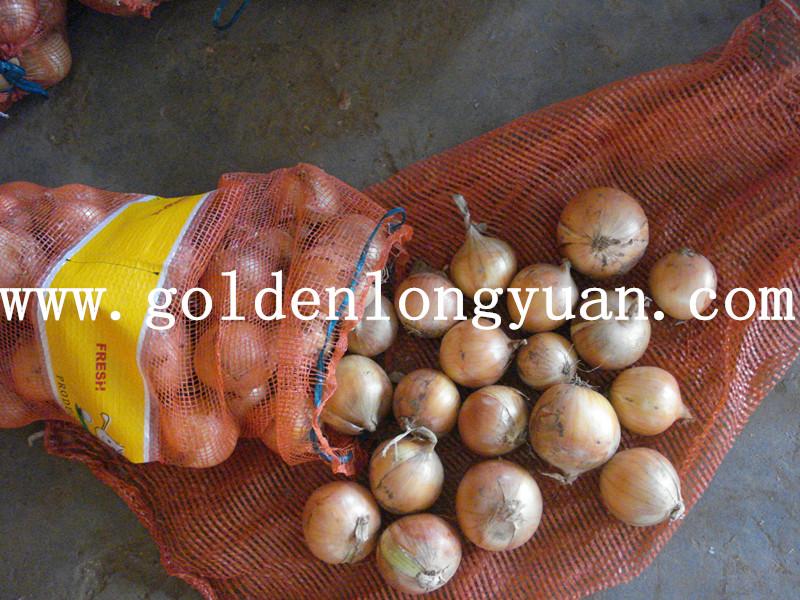 2016 New Crop Fresh Yellow Onion