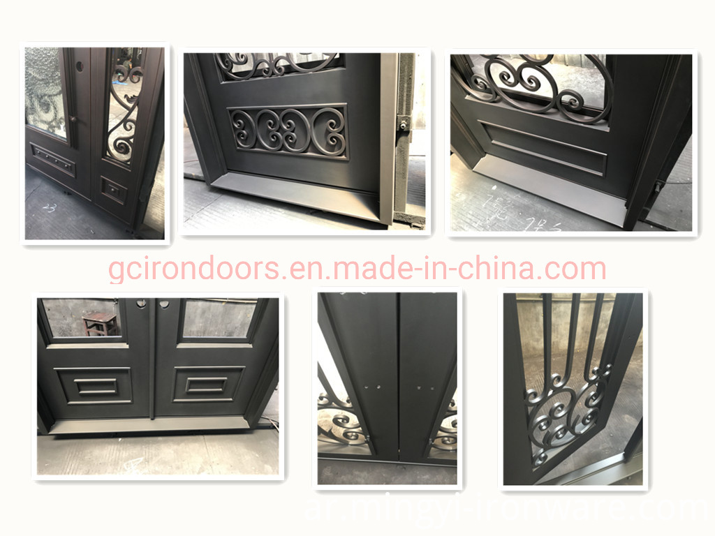 Luxury House Design Wrought Iron Security Door