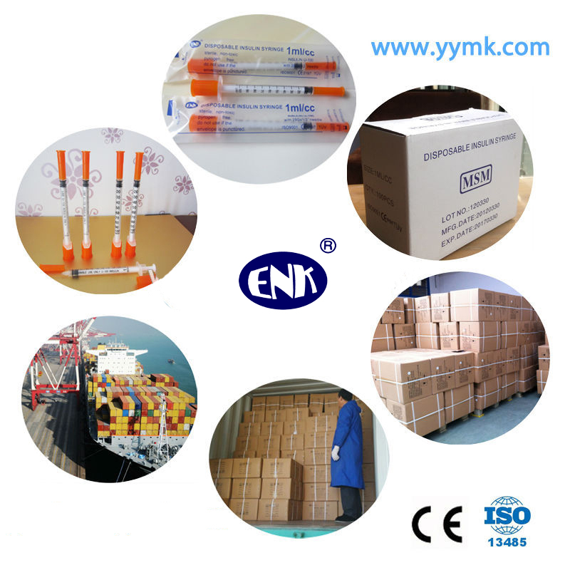 Medical Disposable 0.3cc/0.5cc/1cc Insulin Syringe with Needle (ENK-YDS-001)
