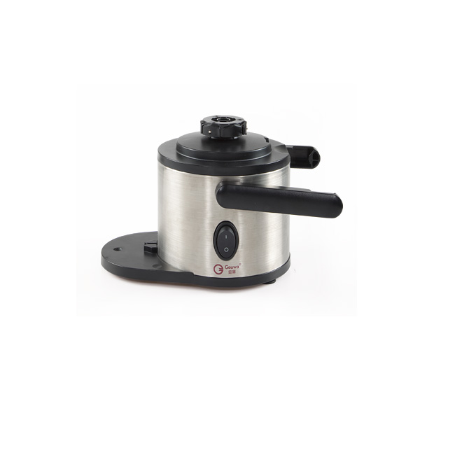 Geuwa CE Electric Vegetable and Fruit Centrifuge Juicer J19