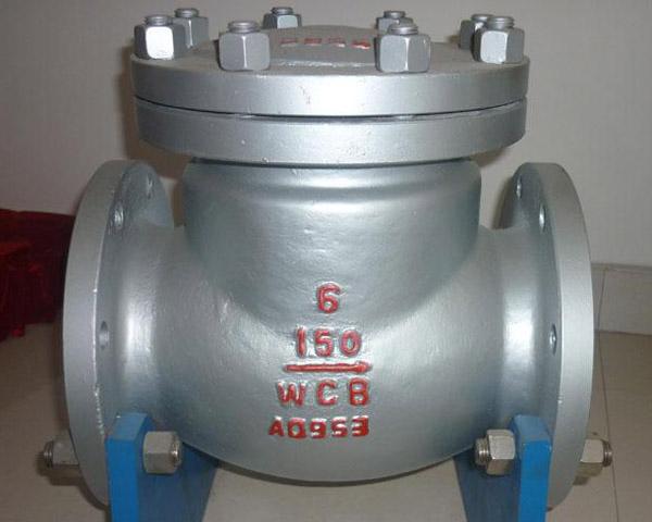 304 Stainless Steel Check Valves