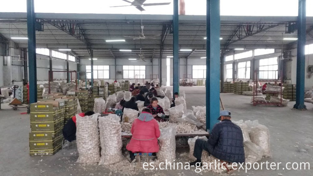 Chinese Wholesale Best Selling