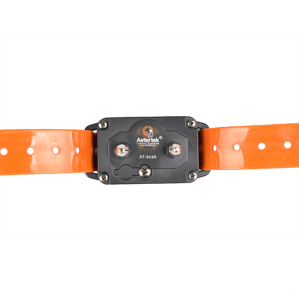 Auto Anti Bark Collar