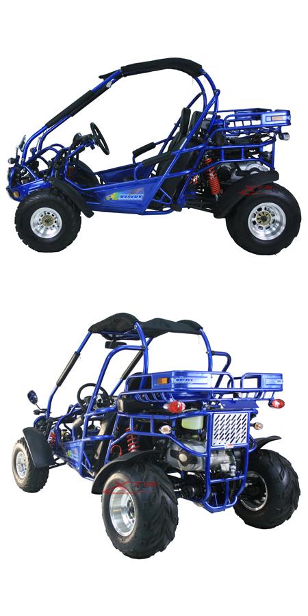 Kids Adult Hammerhead 50cc 150cc 200cc 300cc Buggy with Parts