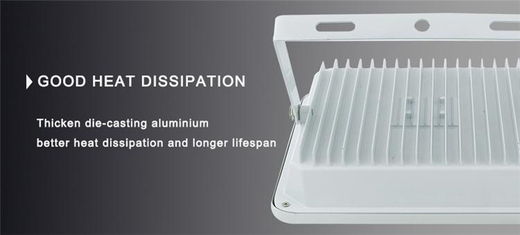 Die-Casting Aluminium Housing Corrosion Resistant 30W LED Flood Lamps