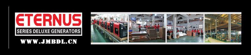 Home Use Silent Type Diesel Generator (BU30KS)