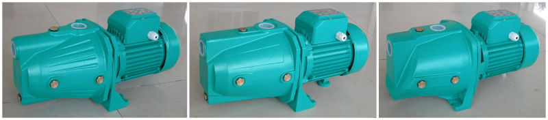 Copper Wire/ Brass Impeller 1 HP Self-Priming Clean Water Jet Pump