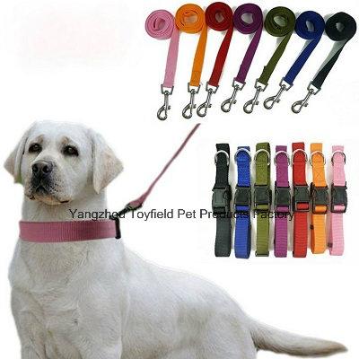 Pet Supply Leash Lead Product Dog Collar