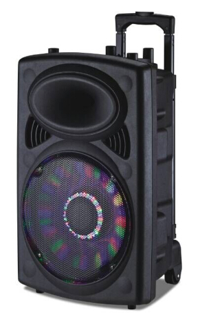 12'' Rechargeable Speaker Bluetooth/FM/USB/SD/Lights/Mic/Remote 6814D