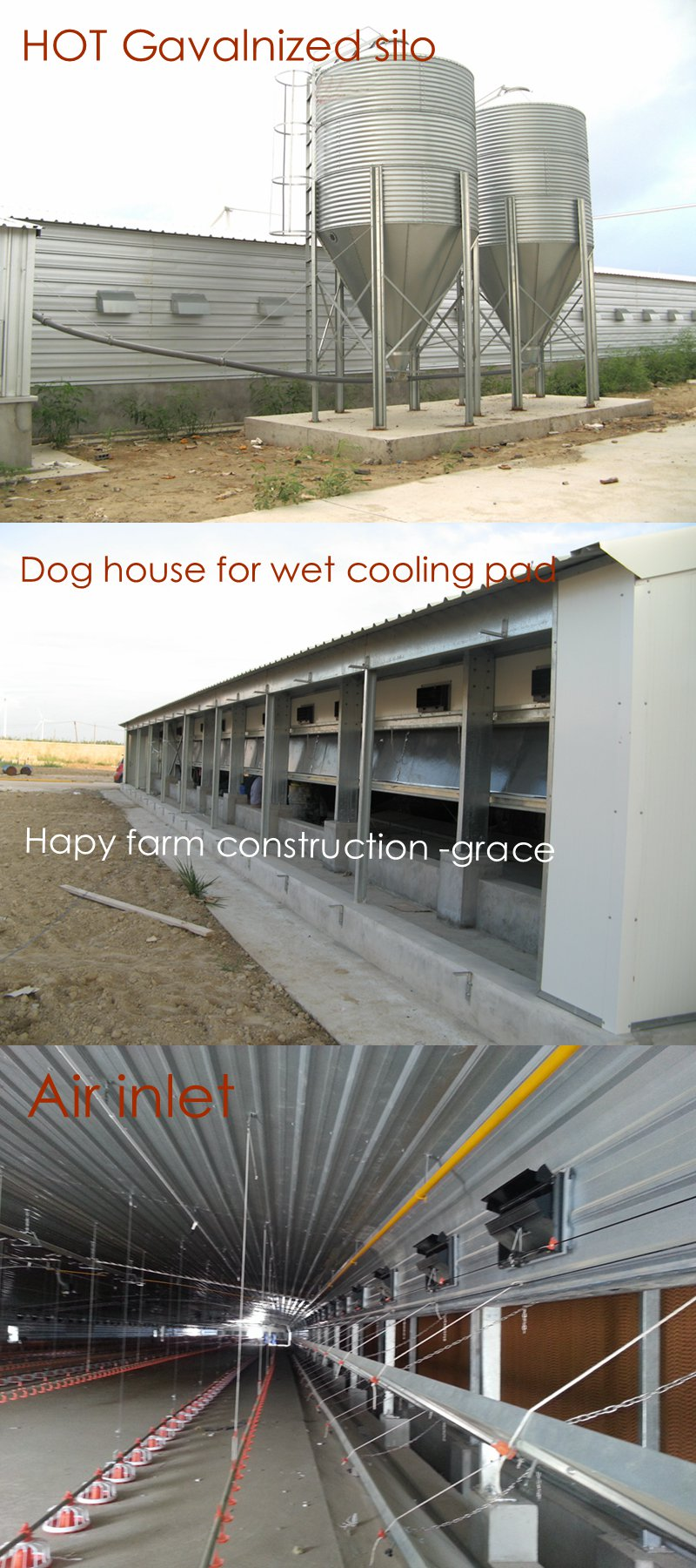 Steel Structure Broiler Farm House with Raising Machinery