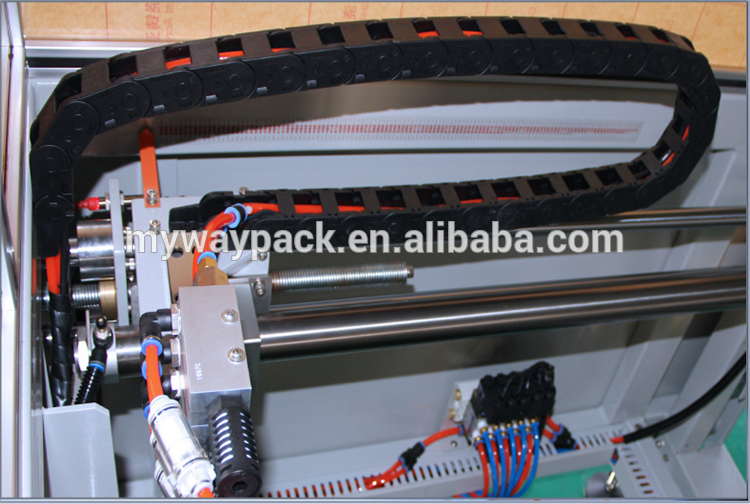Carton erecting packing machine