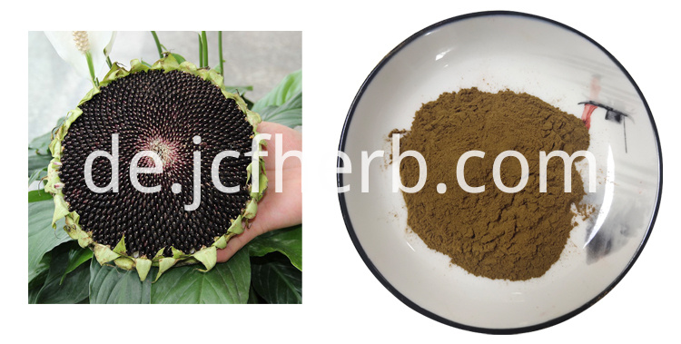 sunflower plate extract powder