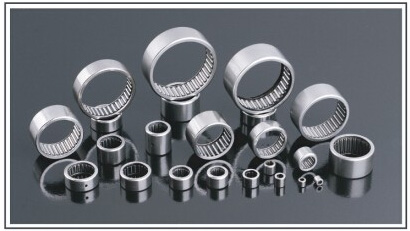 Drawn Cup Needle Roller Bearing HK1210 HK1212 HK1312 Bk1210 Bk1312