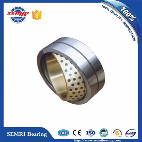 Spherical Plain Bearing (GE20ES) Joint Bearing High Quality