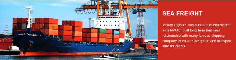 Sea Freight/Logistics Shipping From China to Worldwide